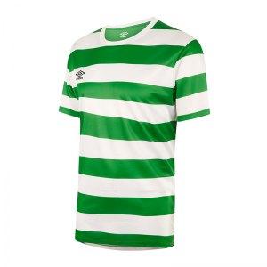 umbro-terrace-trikot-gruen-fehe-fussball-teamsport-textil-trikots-64497u.jpg