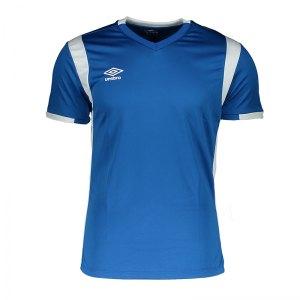 umbro-spartan-trikot-kurzarm-blau-fdx4-fussball-teamsport-textil-t-shirts-umtm0116.jpg