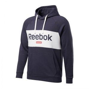 reebok-big-logo-hoody-blau-weiss-lifestyle-textilien-sweatshirts-fi2933.jpg