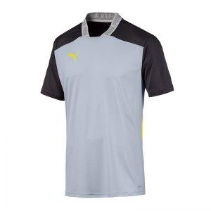 puma-ftblnxt-pro-polo-t-shirt-grau-schwarz-f002-fussball-textilien-t-shirts-656427.png