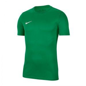 nike-dri-fit-park-vii-kurzarm-trikot-gruen-f302-fussball-teamsport-textil-trikots-bv6708.png