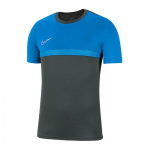 nike-dri-fit-academy-pro-t-shirt-grau-blau-f075-fussball-teamsport-textil-t-shirts-bv6926.png