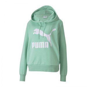 puma-classic-logo-hoody-gruen-f32-lifestyle-textilien-sweatshirts-595201.png