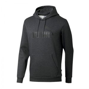 puma-essential-big-logo-hoody-grau-f41-lifestyle-textilien-sweatshirts-851743.png