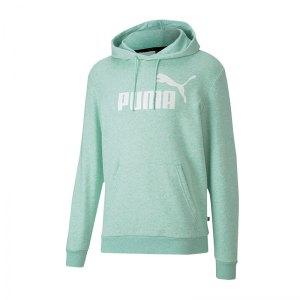puma-essential-hoody-gruen-f32-lifestyle-textilien-sweatshirts-852424.png