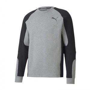 puma-evostripe-crew-sweatshirt-grau-f03-fussball-teamsport-textil-t-shirts-581470.png