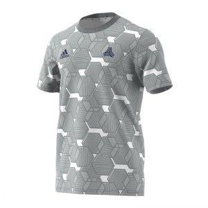 adidas-tango-aop-t-shirt-grau-weiss-fussball-textilien-t-shirts-fm0802.jpg