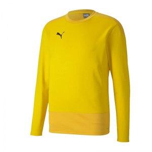puma-teamgoal-23-training-sweatshirt-gelb-f07-fussball-teamsport-textil-sweatshirts-656478.jpg