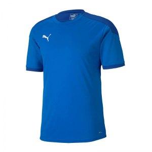 puma-teamfinal-21-training-trikot-blau-f02-fussball-teamsport-textil-trikots-656481.png