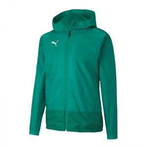 puma-teamgoal-23-training-regenjacke-gruen-f05-fussball-teamsport-textil-allwetterjacken-656559.png