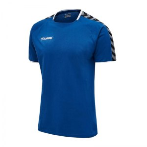 hummel-authentic-trainingsshirt-blau-f7045-205379-teamsport.png