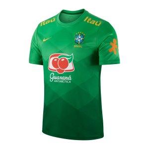 nike-brasilien-trainingstop-kurzarm-gruen-f330-cd2574-fan-shop_front.png