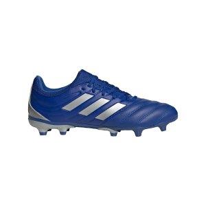 adidas-copa-inflight-20-3-fg-blau-silber-eh1500-fussballschuh_right_out.png