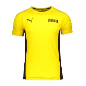 puma-bvb-dortmund-evostripe-t-shirt-kids-gelb-f01-758580-fan-shop_front.png