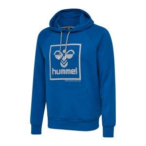 hummel-isam-hoody-blau-f8370-208384-lifestyle_front.png