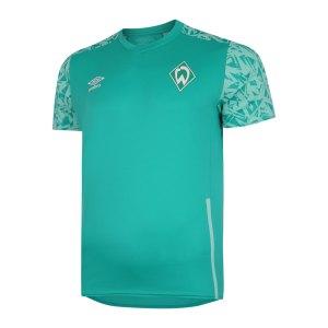 umbro-sv-werder-bremen-training-t-shirt-fjrg-92311u-fan-shop_front.png