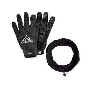 adidas-2er-winter-set-handschuhneckwarmer-schwarz-033905-dy1990-set-equipment_front.png