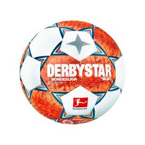 derbystar-bundesliga-brillant-aps-v21-sb-f021-1806-equipment_front.png