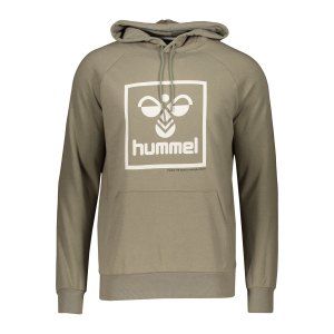 hummel-isam-hoody-grau-f8062-206521-lifestyle_front.png