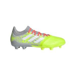adidas-copa-sense-3-fg-grau-gelb-fy6195-fussballschuh_right_out.png