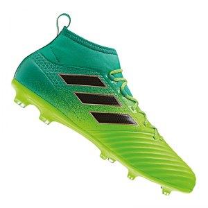 adidas-ace-17-2-primemesh-fg-gruen-schwarz-schuh-neuheit-topmodell-socken-rasen-kunstrasen-nocken-bb5968.jpg