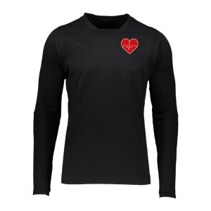 puma-final-wlf-casuals-sweatshirt-schwarz-f03-655293wlf-teamsport_front.png